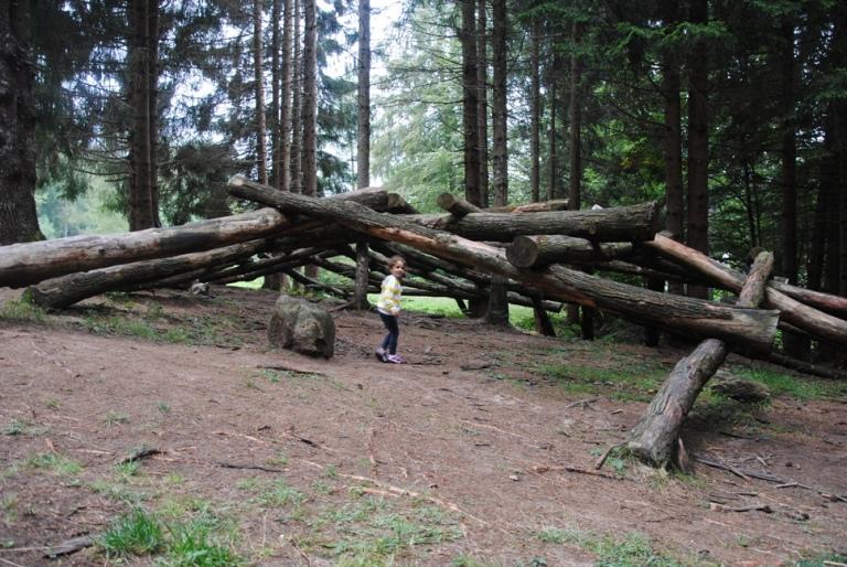 "CUPOLA PER LEONARDO di Roelofs: la ""cupola"" è costruita con legni pesanti e privi di curve"