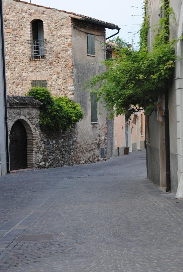 castellaro lagusello (80)