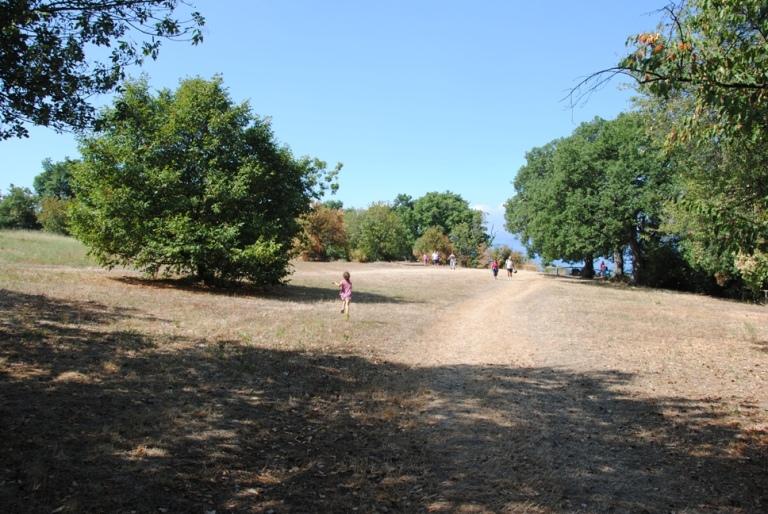il prato sopra la Rocca, nella parte verso Garda