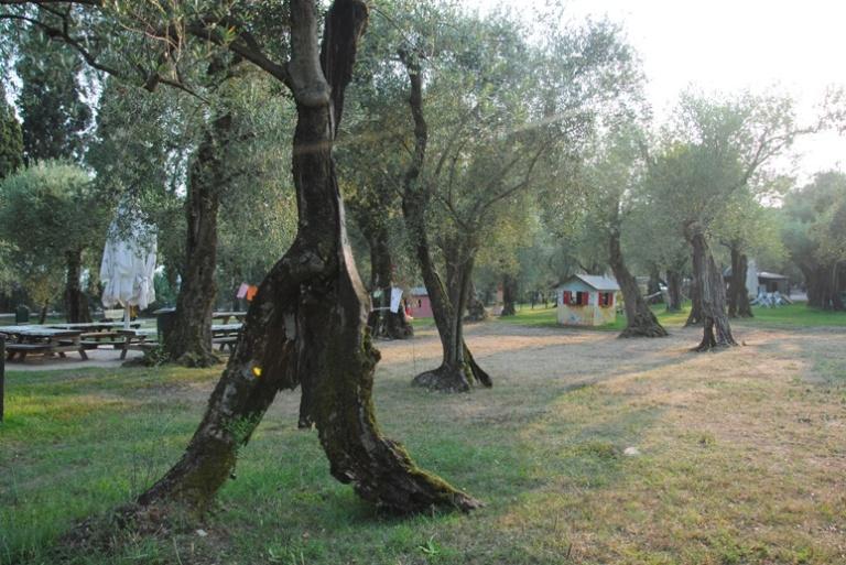 baia delle sirene il parco