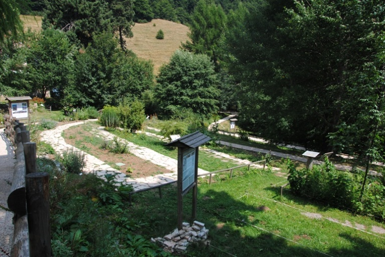 Orto Botanico (in fase di sistemazione)