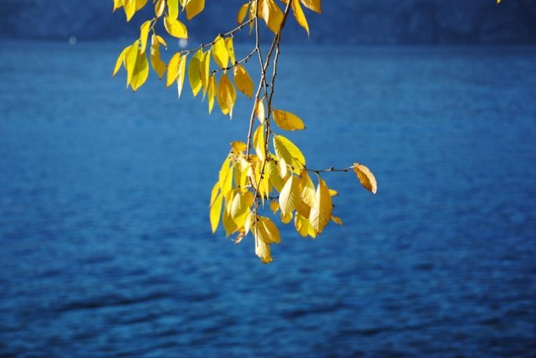 autunno sul lago...