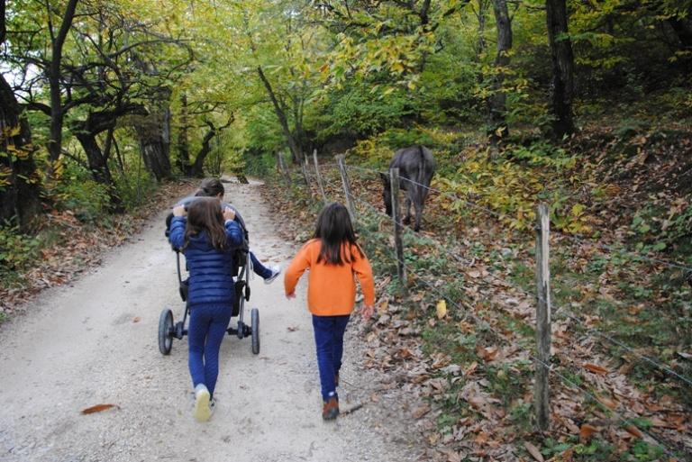 immancabili in ogni passeggiata i nostri amici asinelli!
