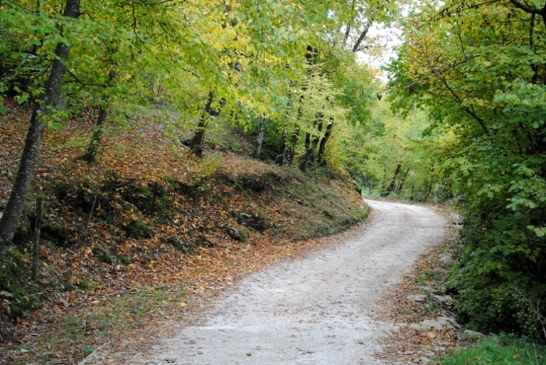 La strada che abbiamo percorso per la nostra passeggiata.