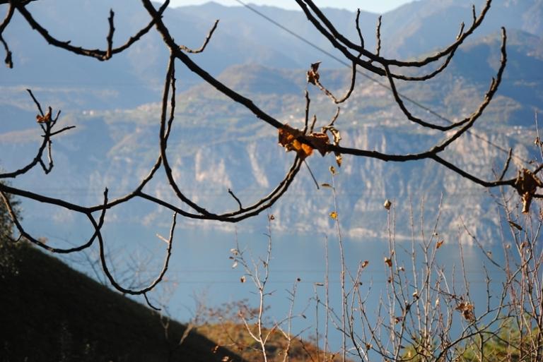 autunno a malcesine