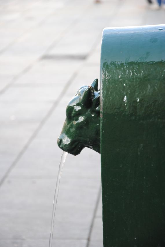 I famosi TORETTI, fontanelle di acqua sempre disponibile per tutti. Si trovano ovunque e sono perfetti per chi visita la città con bambini! Le bambine hanno giocato a contarli!