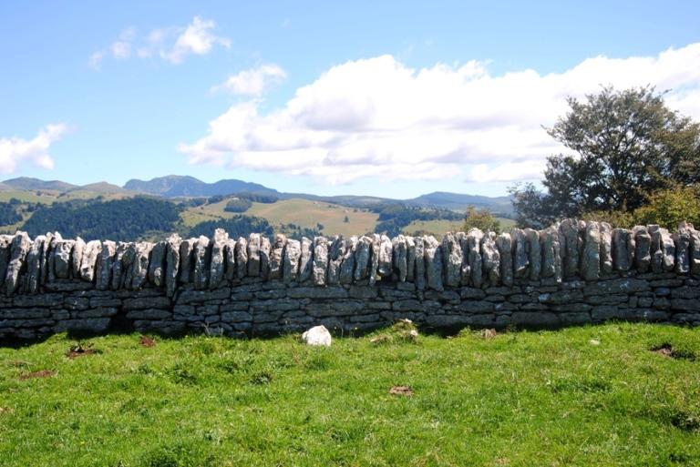 tipico muretto a secco con la pietra della Lessinia