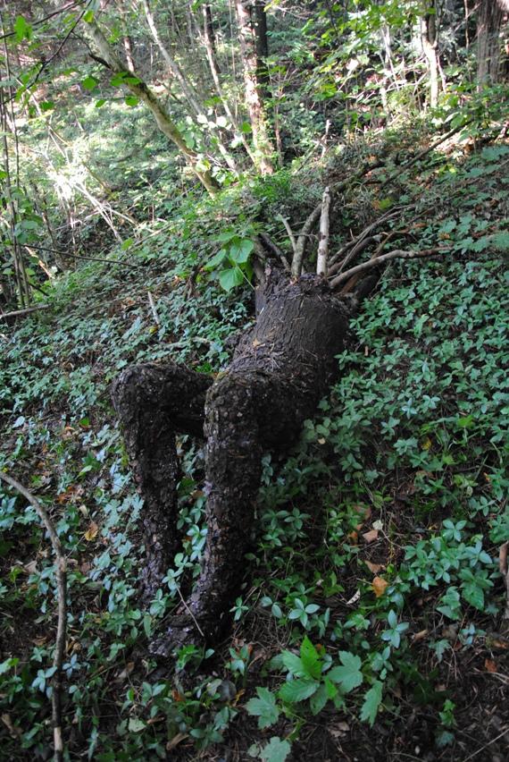 L'uomo - albero è l'opera che ha colpito di più le bambine.